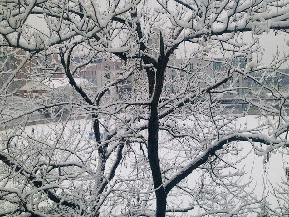 alt 7 点雪景