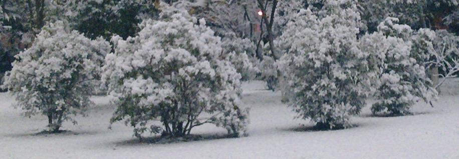 alt 雪景,五角星
